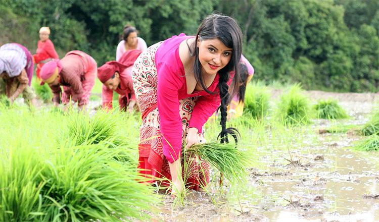 Sushma Adhikari Glamour Photo